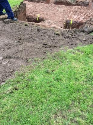 Top soil back
