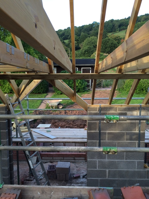 View to garden from scaffolding above new kitchen