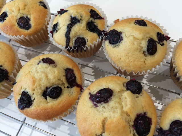 blueberry-muffins-1-11-16