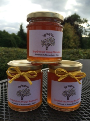Pink Grapefruit and Orange Marmalade