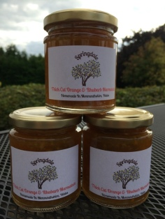 Thick Cut Orange and Rhubarb Marmalade 220g