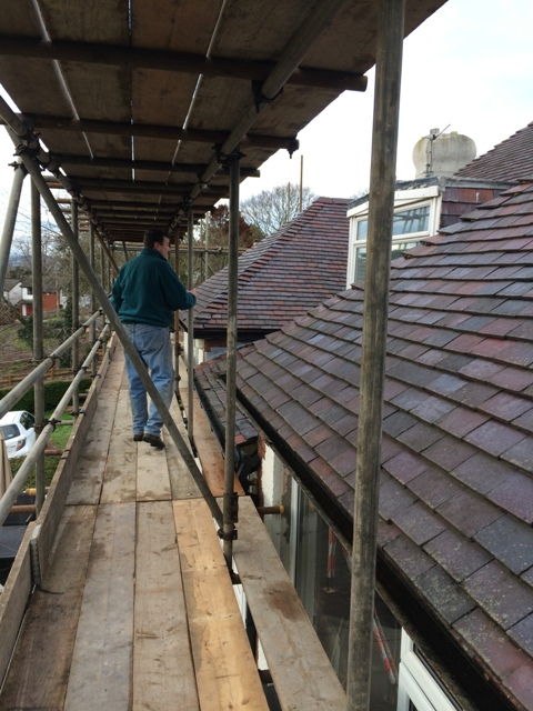 bottom-scaffolding