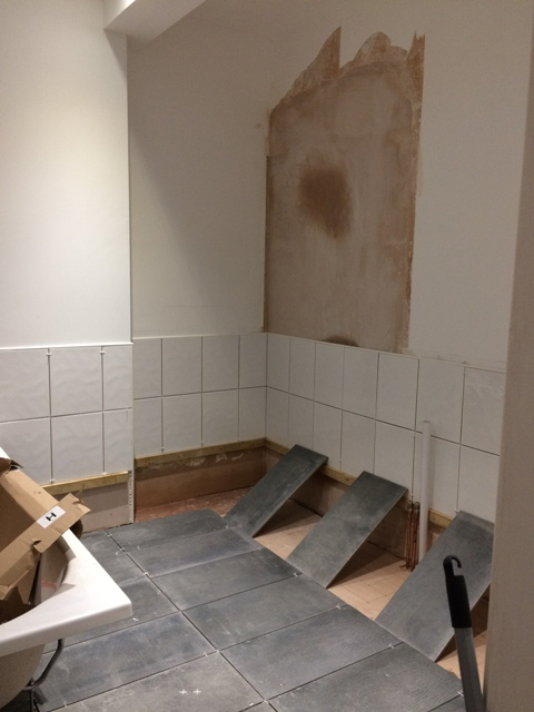 some-floor-tiles-and-wall-tiles-laid-in-new-bathroom