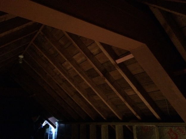 steel-beam-number-1-from-inside-house