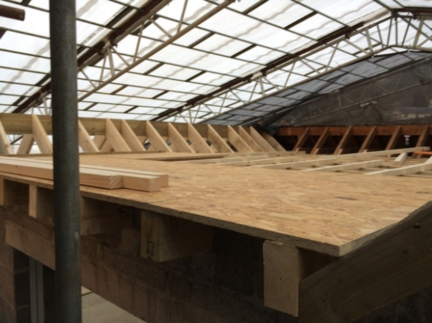 beginning-of-the-flat-roof
