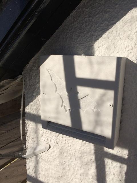 Bat box 1 - shadowed by scaffolding
