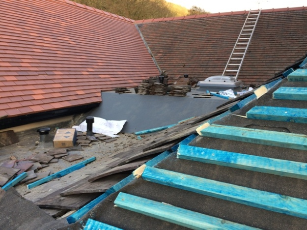 New ridge tiles - ladder up from utility flat roof
