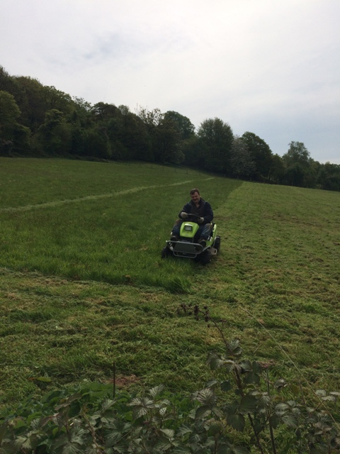 Grass cutting in 2nd field pic 3