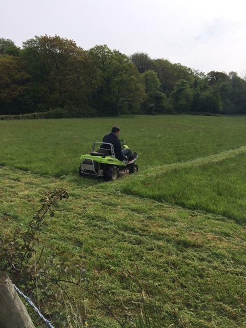 Grass cutting - Paul and the Grillo