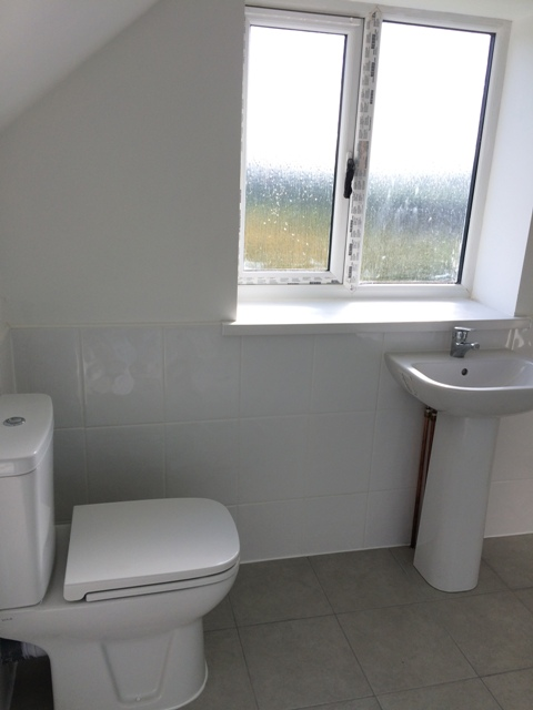 New toilet and wash basin